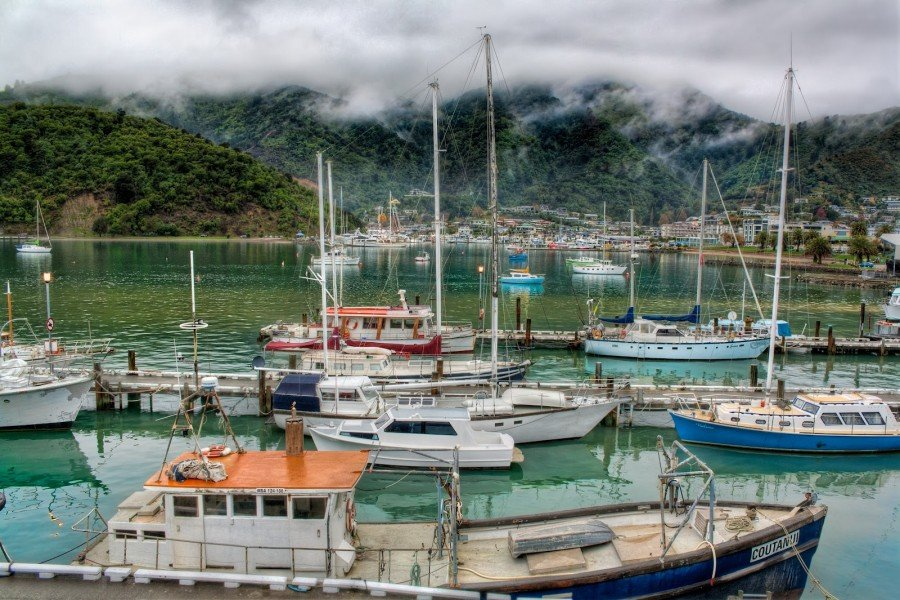 Hills of Harbour Picton William Woodward