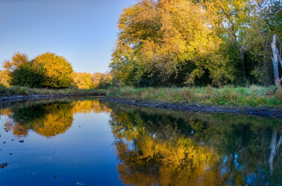 Colors of Fall Illinois William Woodward