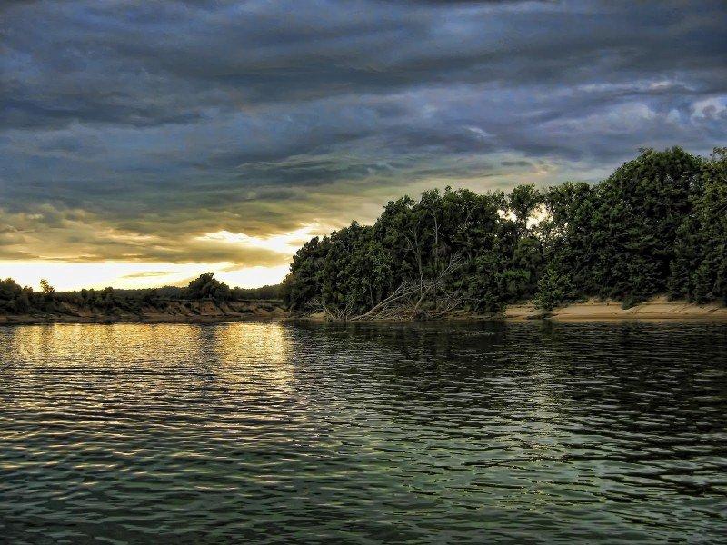 Nature 2 Alabama William Woodward