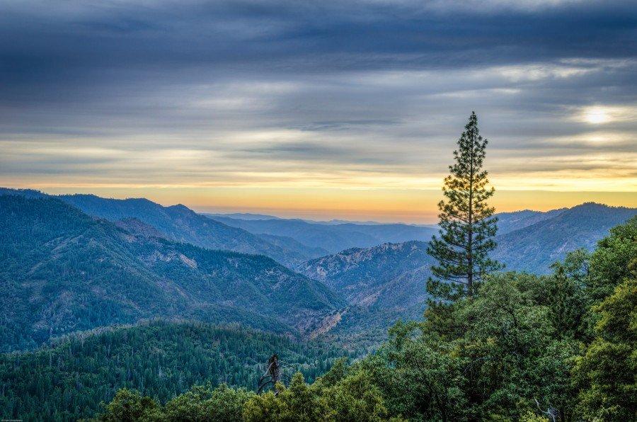Above Others Yosemite William Woodward