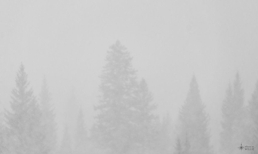 Fog Mt. Evans William Woodward