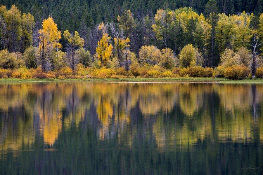 Colors in River Grand Teton William Woodward