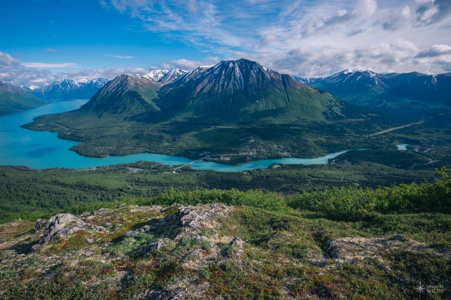 blue water of the kenai river cooper landing alaska william woodward