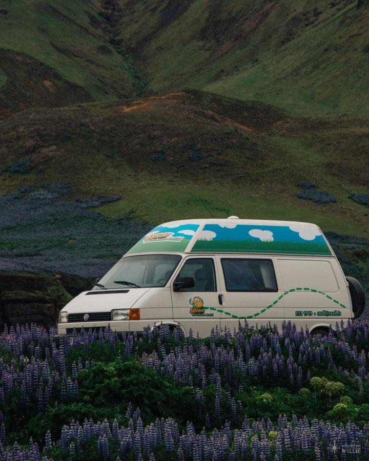 Iceyland Iceland (13)